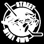 logo street mini 4wd